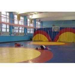 Государственное учебно-спортивное учреждение «Борисовская специализированная детско-юношеская школа олимпийского резерва»